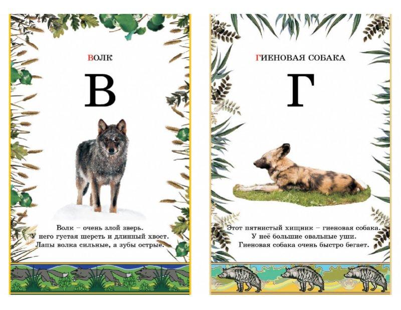 Александра Бодрова Азбука в картинках  Лучшие Детские Книги