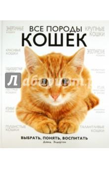 Все породы кошек бычки казахской белоголовой породы