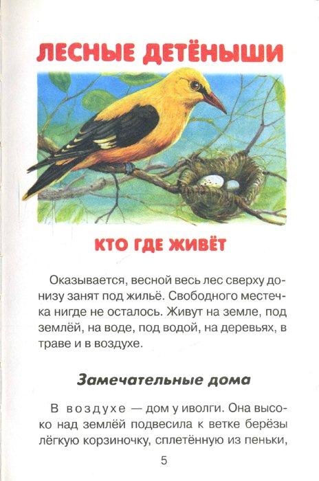 Иллюстрация 1 из 4 для Лесные детеныши - Виталий Бианки | Лабиринт - книги. Источник: Лабиринт