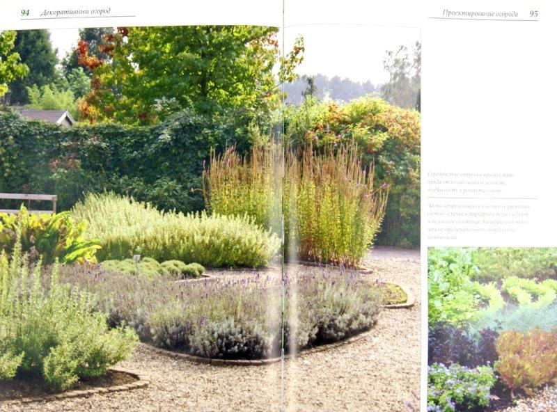 Иллюстрация 1 из 11 для Декоративный огород в дизайне сада. Традиции, практика создания и мода - Ирина Сахарова | Лабиринт - книги. Источник: Лабиринт
