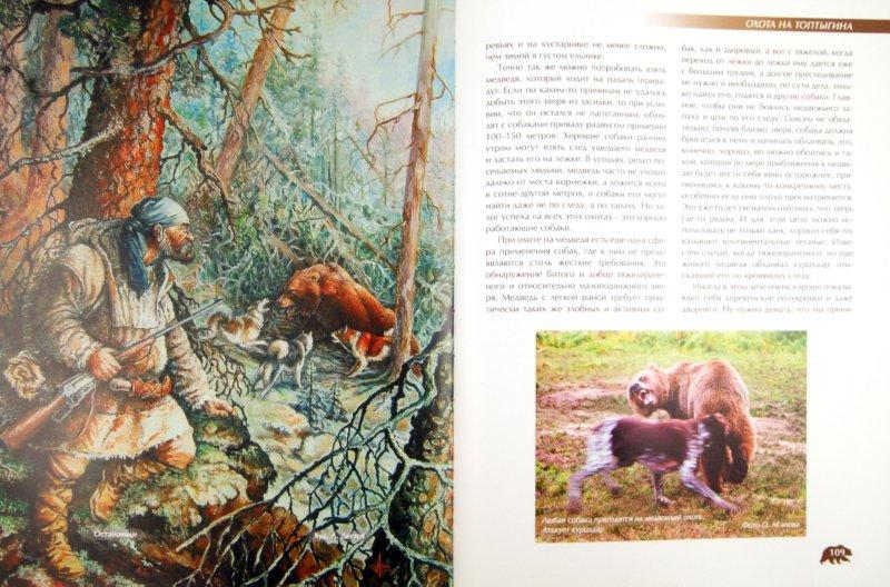 Иллюстрация 1 из 44 для Охота на медведя - Олег Малов | Лабиринт - книги. Источник: Лабиринт