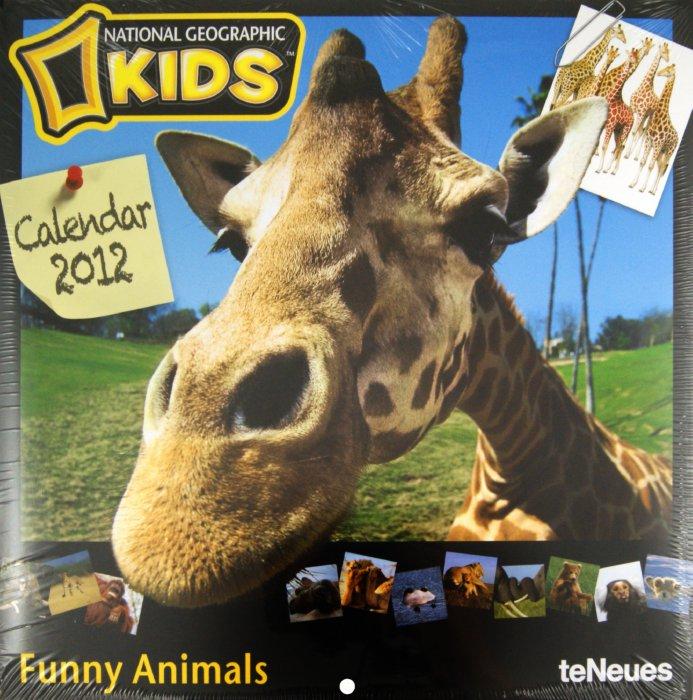 """Иллюстрация 1 из 2 для Календарь на 2012 год """"National Geographic. Забавные животные"""" (5229-3)   Лабиринт - сувениры. Источник: Лабиринт"""