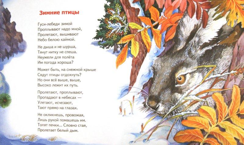 Иллюстрация 1 из 4 для Смотрит в зеркало зима - В. Степанов | Лабиринт - книги. Источник: Лабиринт
