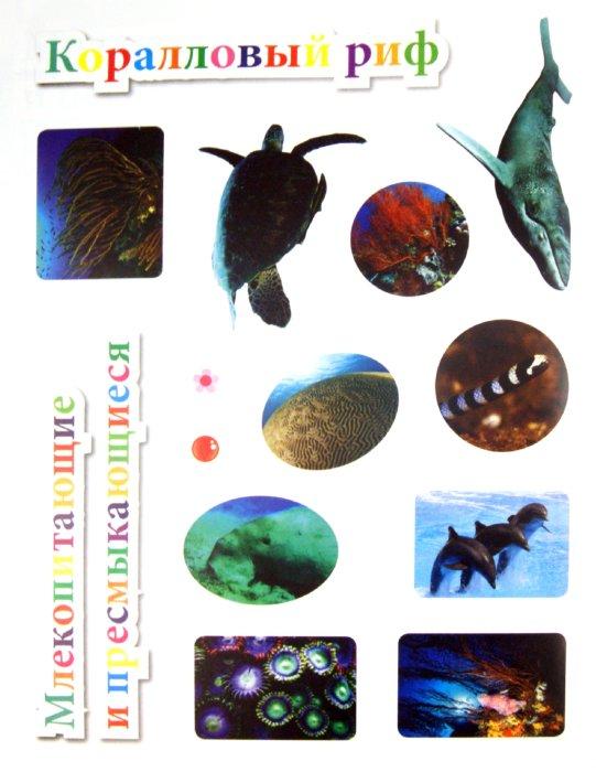 Иллюстрация 1 из 10 для Подводный мир - Наталья Костина | Лабиринт - книги. Источник: Лабиринт