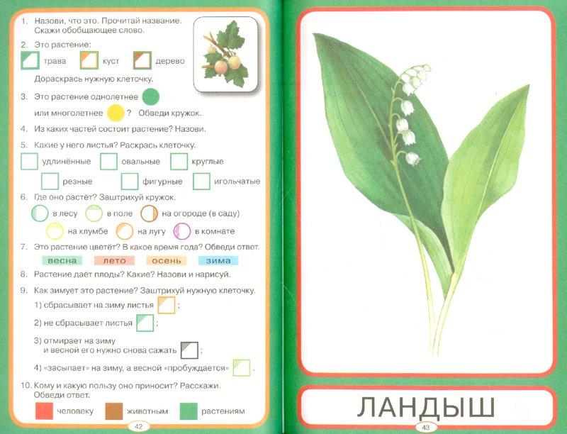 Иллюстрация 1 из 12 для Мир растений. Упражнения на проверку знаний и закрепление знаний | Лабиринт - книги. Источник: Лабиринт