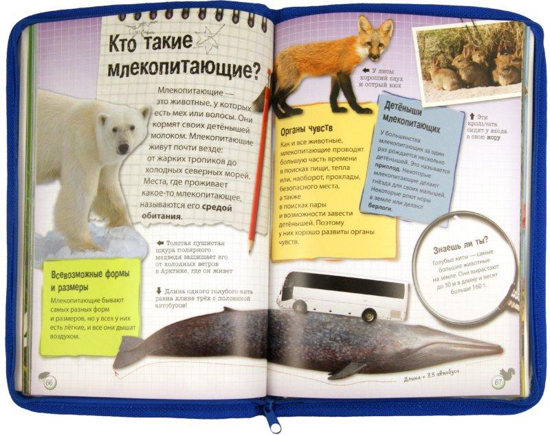 Иллюстрация 1 из 19 для Живая природа. Звери, птицы, животные и растения вокруг нас - Терри Дженнингс   Лабиринт - книги. Источник: Лабиринт