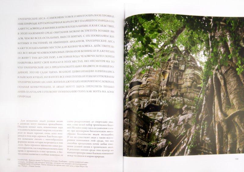 Иллюстрация 1 из 19 для Планета людей: природа и человечество - великая история борьбы - Темплэр, Лейт   Лабиринт - книги. Источник: Лабиринт