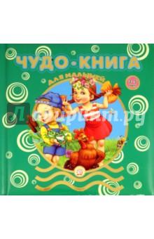 Чудо-книга для малышей. 3-5 лет