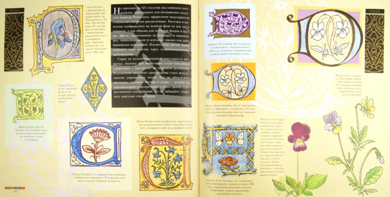 Иллюстрация 1 из 11 для Буквицы. Иллюминированный алфавит и декоративная каллиграфия - Ноад, Селигман   Лабиринт - книги. Источник: Лабиринт