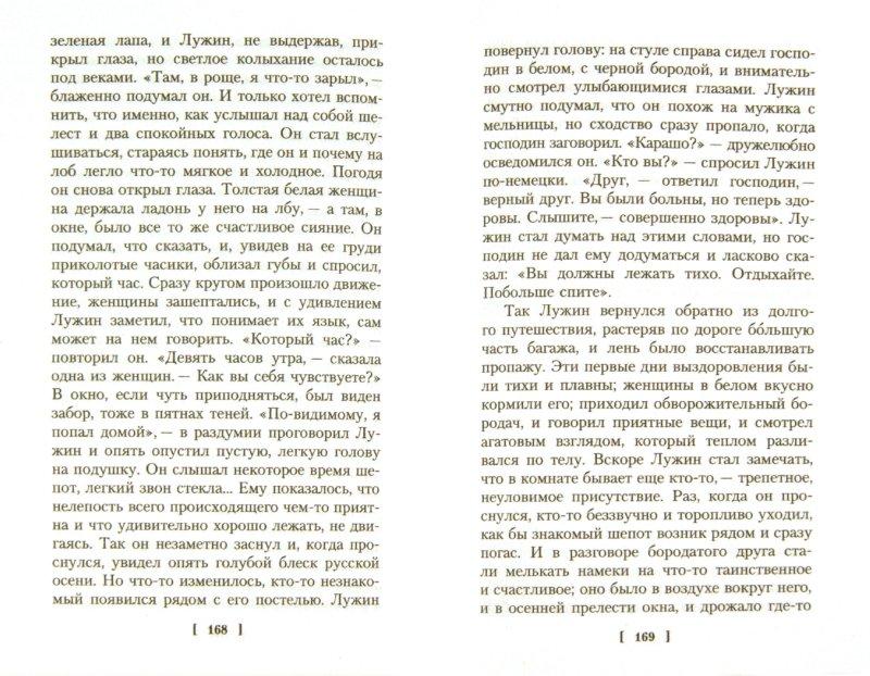 Иллюстрация 1 из 25 для Защита Лужина - Владимир Набоков | Лабиринт - книги. Источник: Лабиринт