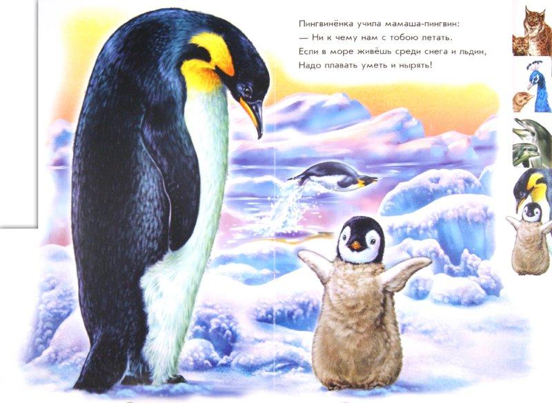 Иллюстрация 1 из 6 для В зоопарке - Ринат Курмашев | Лабиринт - книги. Источник: Лабиринт
