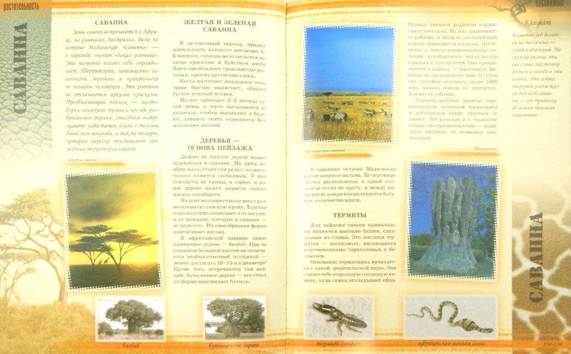Иллюстрация 1 из 16 для Мир животных - Цеханская, Стрелков | Лабиринт - книги. Источник: Лабиринт