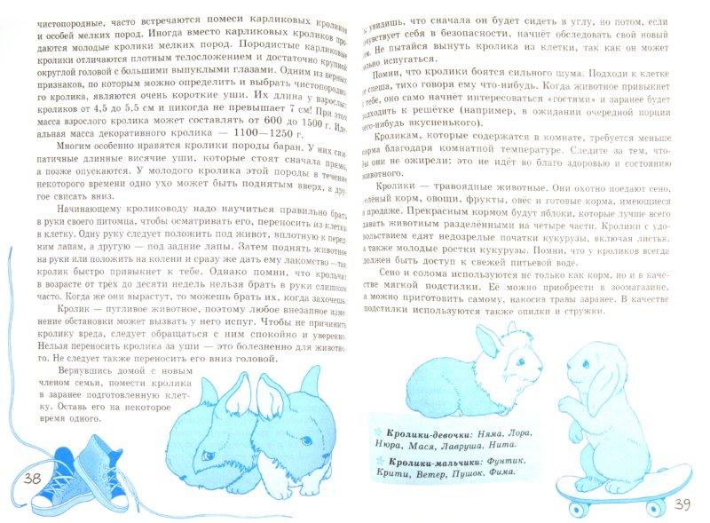 Иллюстрация 1 из 6 для Внимание! Только для мальчиков | Лабиринт - книги. Источник: Лабиринт