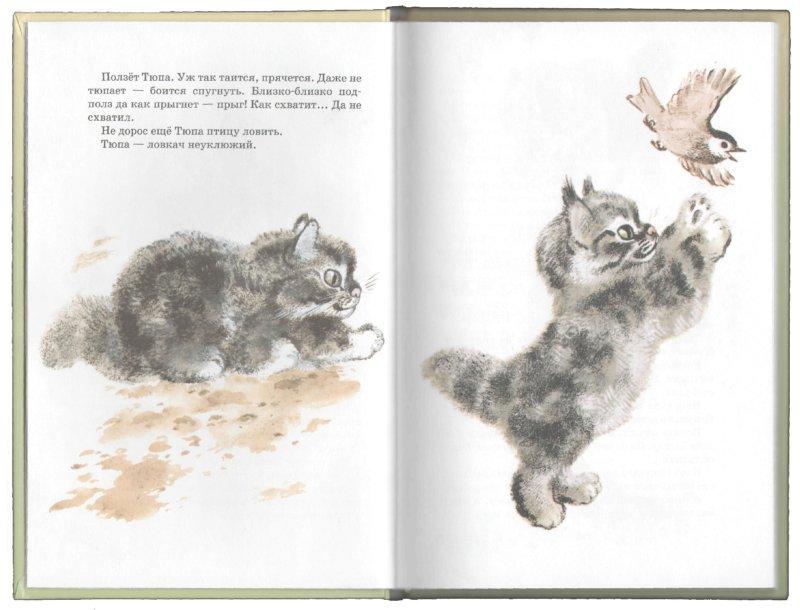 Иллюстрация 1 из 40 для Тюпа, Томка и сорока - Евгений Чарушин   Лабиринт - книги. Источник: Лабиринт