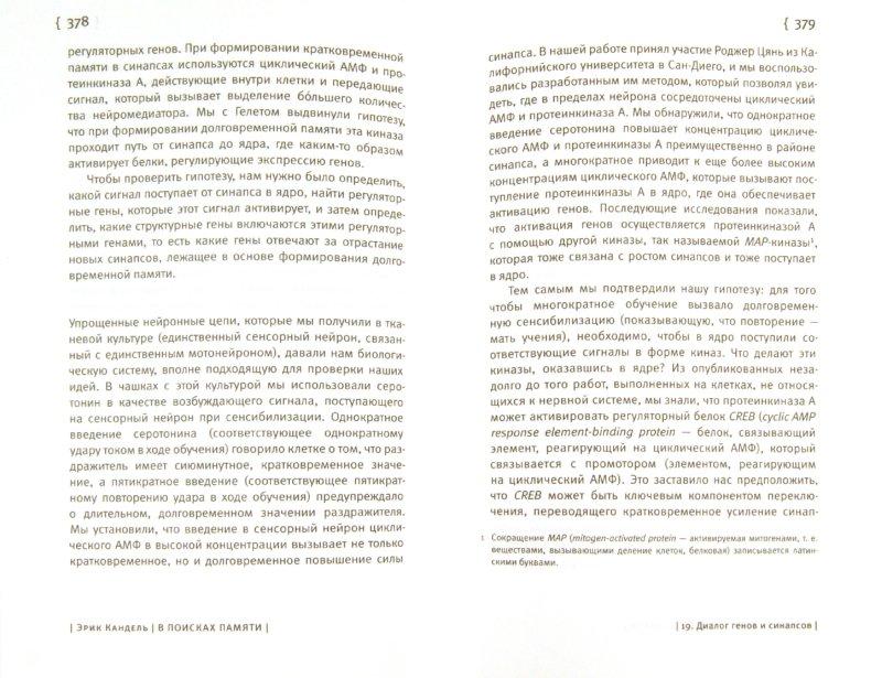 Иллюстрация 1 из 10 для В поисках памяти. Возникновение новой науки о человеческой психике - Эрик Кандель | Лабиринт - книги. Источник: Лабиринт