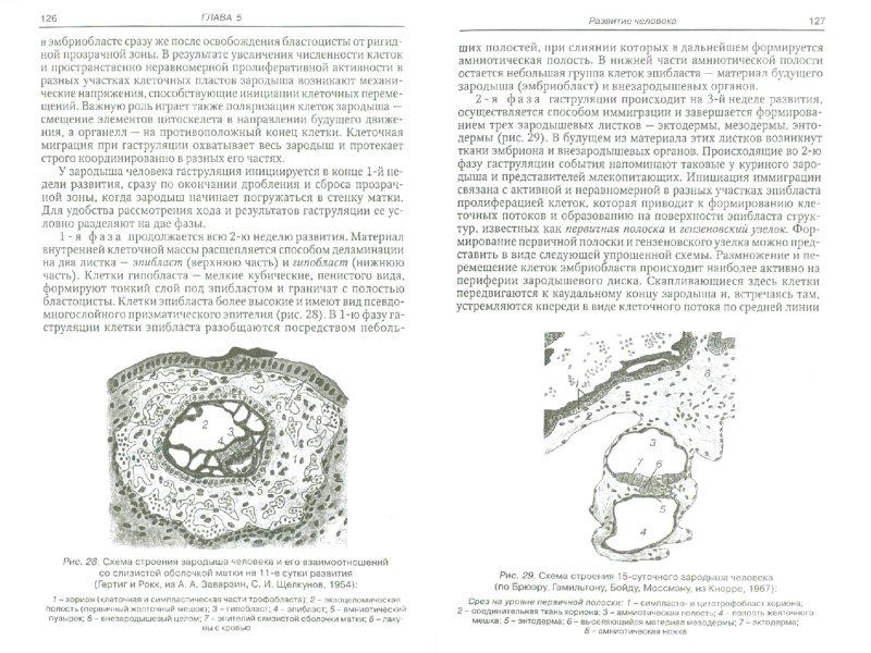 Иллюстрация 1 из 8 для Общая и медицинская эмбриология - Данилов, Боровая | Лабиринт - книги. Источник: Лабиринт