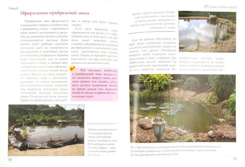 Иллюстрация 1 из 13 для Садовые водоёмы - Валерия Ильина | Лабиринт - книги. Источник: Лабиринт