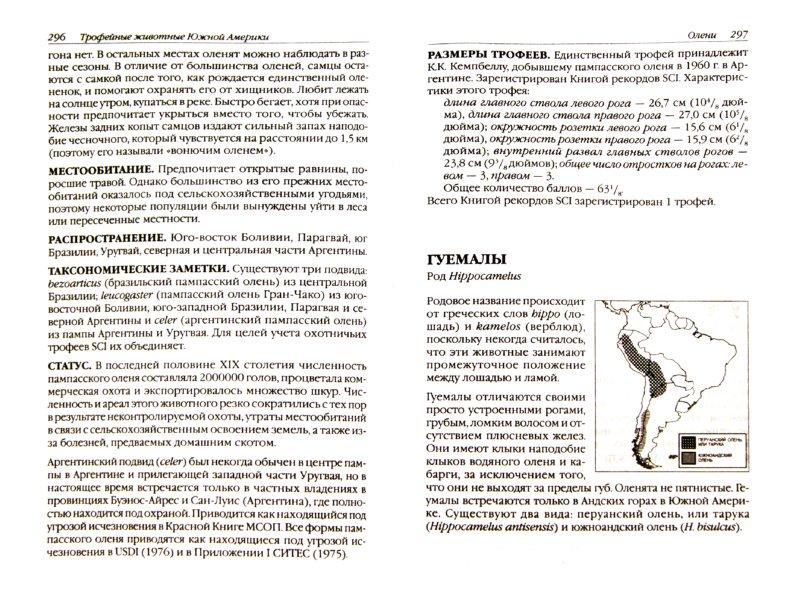 Иллюстрация 1 из 11 для Охотничьи (трофейные) животные Америки, Австралии и Океании - Хохлов, Севостьянов   Лабиринт - книги. Источник: Лабиринт