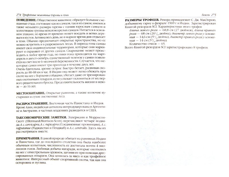 Иллюстрация 1 из 23 для Охотничьи (трофейные) животные Европы и Азии. Справочник для охотников | Лабиринт - книги. Источник: Лабиринт