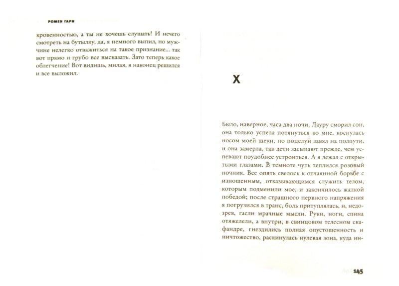 Иллюстрация 1 из 6 для Дальше ваш билет недействителен - Ромен Гари   Лабиринт - книги. Источник: Лабиринт