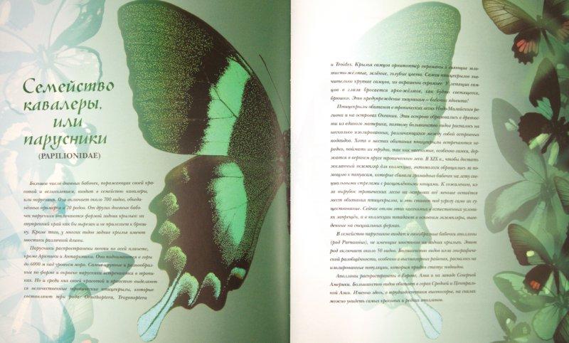 Иллюстрация 1 из 35 для Бабочки мира   Лабиринт - книги. Источник: Лабиринт