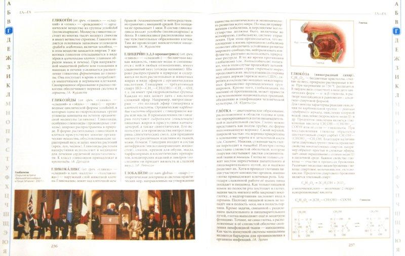Иллюстрация 1 из 28 для Универсальная школьная энциклопедия. Том 1. А-Л | Лабиринт - книги. Источник: Лабиринт