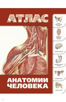 Атлас анатомии человека книги издательство аст большой атлас анатомии человека