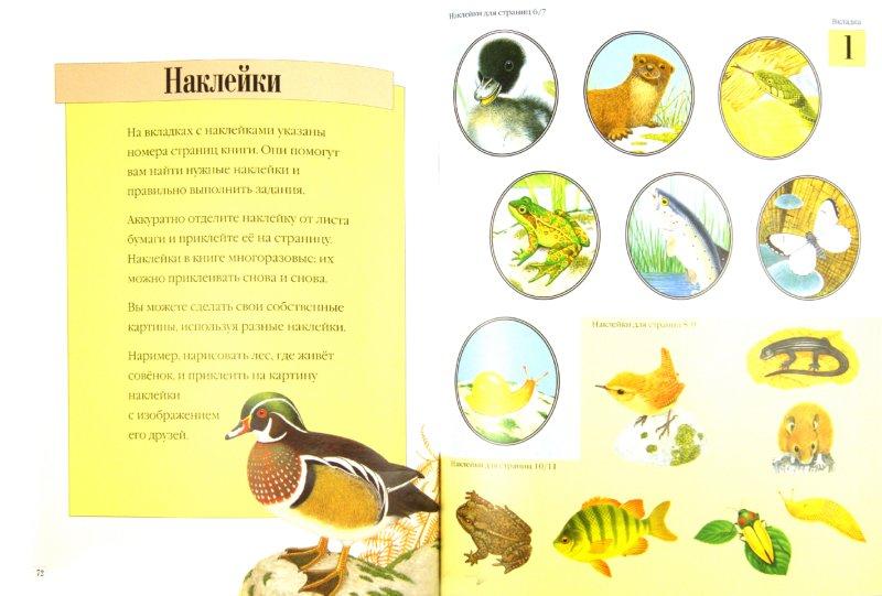 Иллюстрация 1 из 9 для Чудо-наклейки. Все о животных - Морис Пледжер | Лабиринт - книги. Источник: Лабиринт