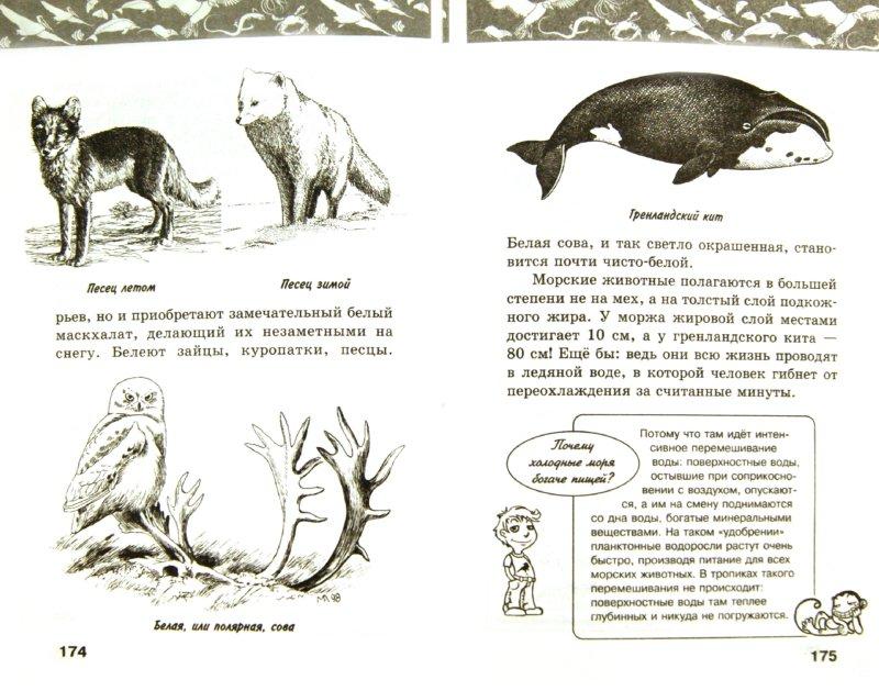 Иллюстрация 1 из 42 для Жизнь животных   Лабиринт - книги. Источник: Лабиринт