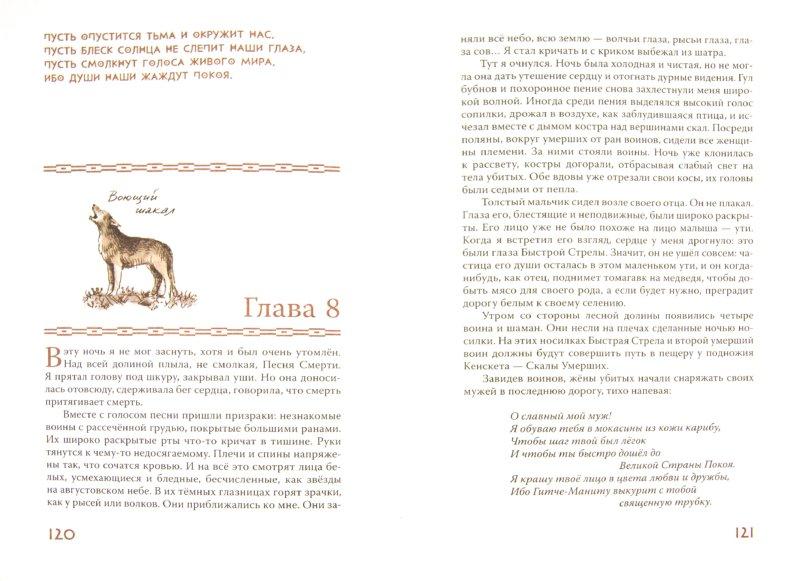 Иллюстрация 1 из 38 для Земля Солёных Скал - Сат-Ок | Лабиринт - книги. Источник: Лабиринт