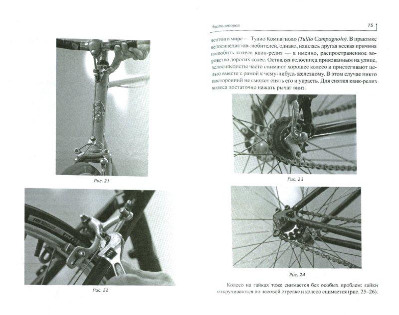 Иллюстрация 1 из 11 для Моя страсть - велосипед - Ефремова, Морозов   Лабиринт - книги. Источник: Лабиринт