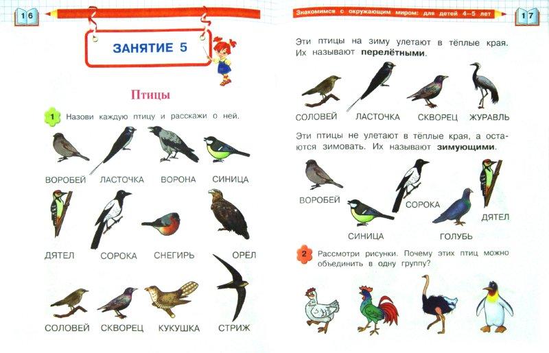 Иллюстрация 1 из 9 для Знакомимся с окружающим миром. Для детей 4-5 лет - Егупова, Пятак | Лабиринт - книги. Источник: Лабиринт