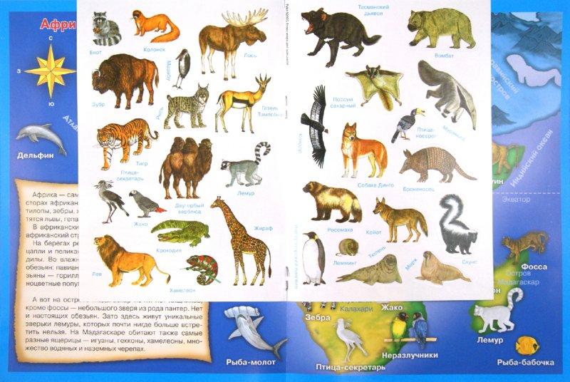 картинки животных россии на карте советском