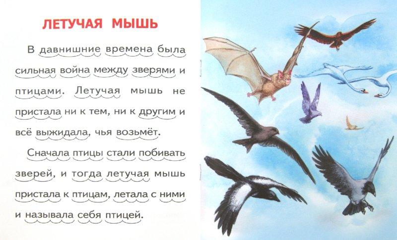 Иллюстрация 1 из 16 для Белка и волк - Лев Толстой   Лабиринт - книги. Источник: Лабиринт