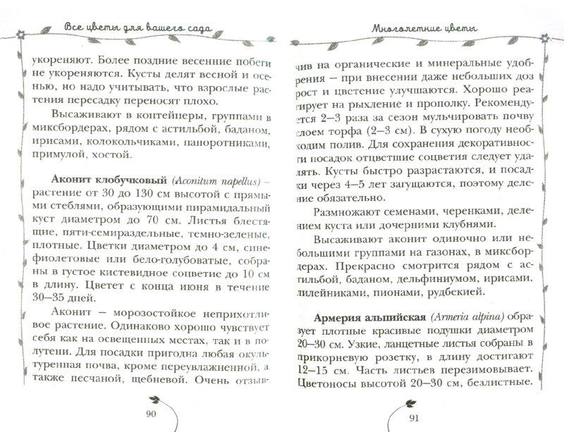 Иллюстрация 1 из 13 для Лучшие цветы для вашего сада - Князева, Князева | Лабиринт - книги. Источник: Лабиринт