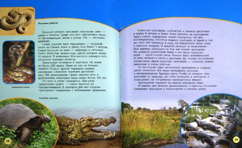 Иллюстрация 1 из 8 для Зоопарки - Дроздов, Макеев | Лабиринт - книги. Источник: Лабиринт