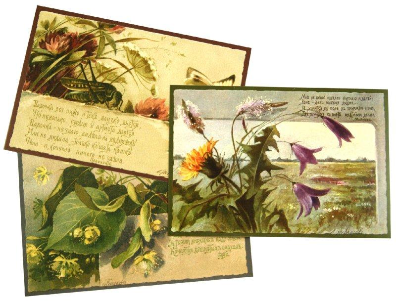 Иллюстрация 1 из 20 для Цветов и грез манящий аромат. Стихотворные цветы - Л. Эндаурова | Лабиринт - сувениры. Источник: Лабиринт