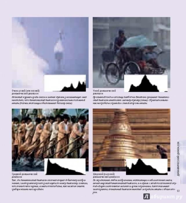 Иллюстрация 8 из 32 для Свет и освещение в цифровой фотографии. Профессиональное практическое руководство - Майкл Фриман | Лабиринт - книги. Источник: Лабиринт