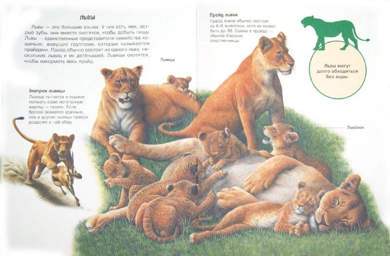 Иллюстрация 1 из 24 для Детская энциклопедия и любимые сказки в одной книге | Лабиринт - книги. Источник: Лабиринт