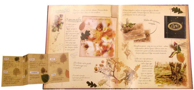 Иллюстрация 1 из 24 для Тайны фей. Дневник наблюдений - Сесиль Баркер | Лабиринт - книги. Источник: Лабиринт