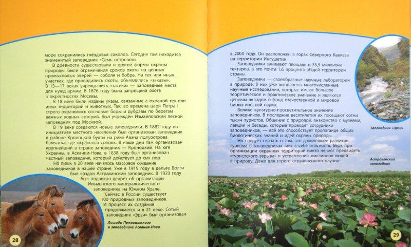 Иллюстрация 1 из 11 для Охрана природы - Дроздов, Макеев | Лабиринт - книги. Источник: Лабиринт
