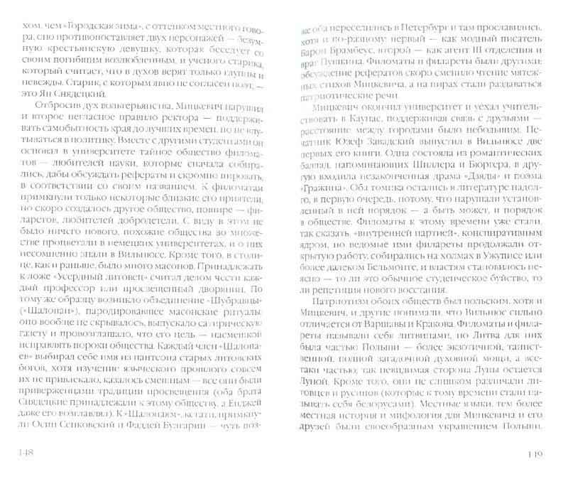Иллюстрация 1 из 18 для Вильнюс. Город в Европе - Томас Венцлова | Лабиринт - книги. Источник: Лабиринт