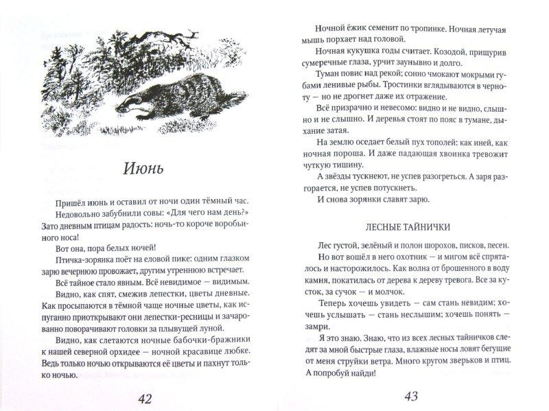 Иллюстрация 1 из 12 для Лесные тайнички - Николай Сладков | Лабиринт - книги. Источник: Лабиринт