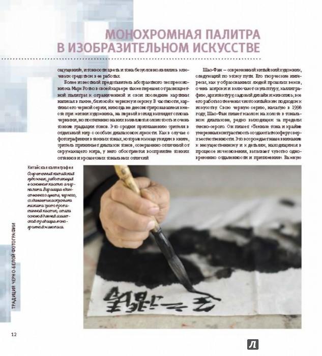 Иллюстрация 7 из 36 для Черно-белая цифровая фотография. Профессиональное практическое руководство - Майкл Фриман | Лабиринт - книги. Источник: Лабиринт