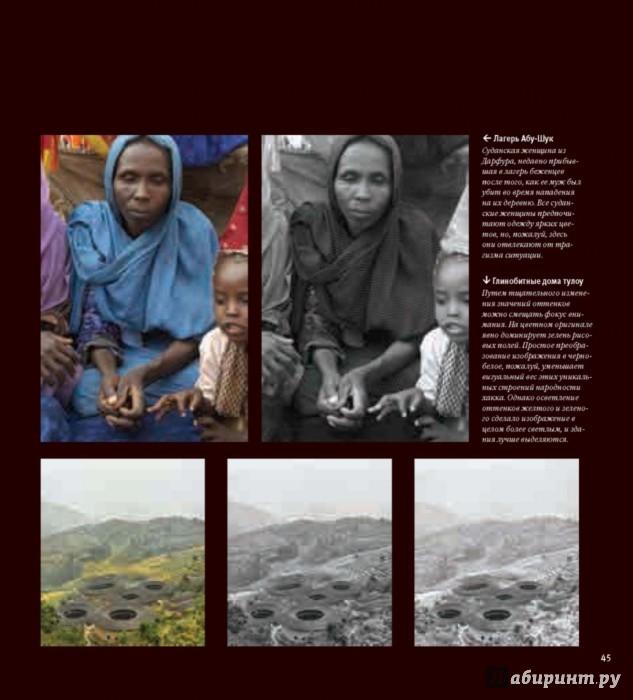 Иллюстрация 15 из 36 для Черно-белая цифровая фотография. Профессиональное практическое руководство - Майкл Фриман   Лабиринт - книги. Источник: Лабиринт