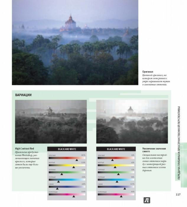 Иллюстрация 19 из 36 для Черно-белая цифровая фотография. Профессиональное практическое руководство - Майкл Фриман | Лабиринт - книги. Источник: Лабиринт