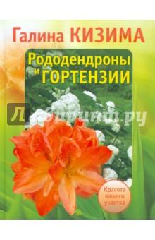 Рододендроны и гортензии