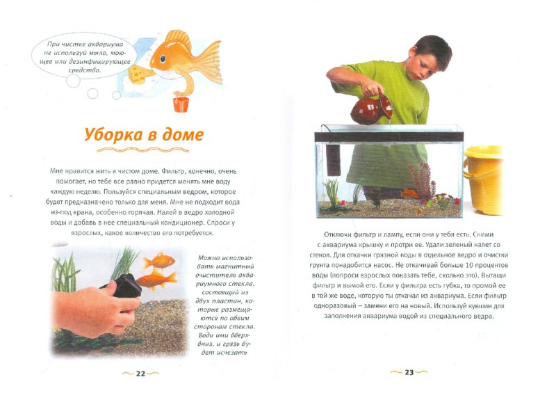 Иллюстрация 1 из 13 для Золотая рыбка - Джилл Пейдж | Лабиринт - книги. Источник: Лабиринт