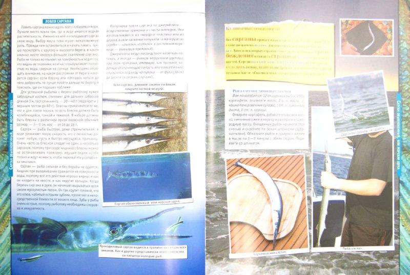 Иллюстрация 1 из 6 для 50 рыб, которых необходимо поймать, если ты настоящий рыбак - Сергей Цеханский | Лабиринт - книги. Источник: Лабиринт