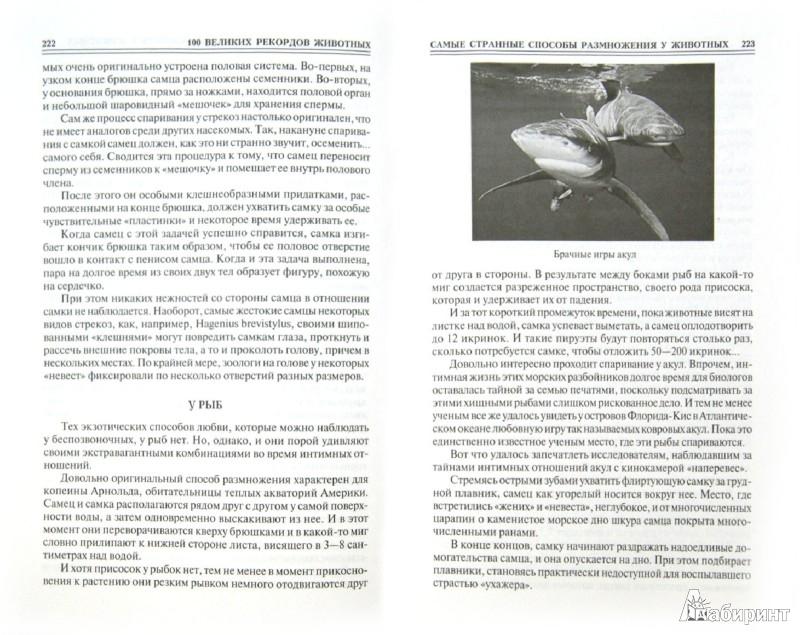 Иллюстрация 1 из 23 для 100 великих рекордов животных - Анатолий Бернацкий   Лабиринт - книги. Источник: Лабиринт
